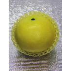 グレープフルーツ 1個